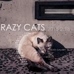 「CRAZY CATS」2月17日(水)〜2月22日(日)