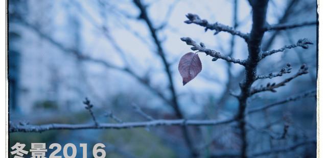 「冬景2016」1月20日(水)〜24日(日)