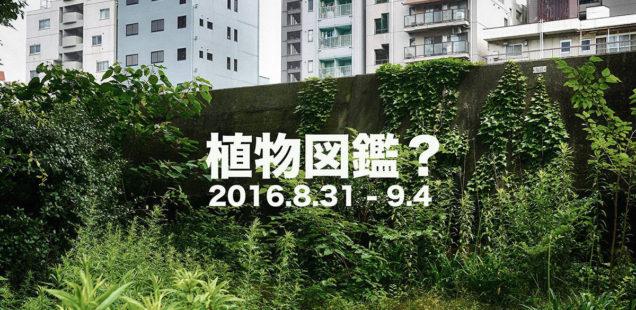 「植物図鑑?」8月31日(水)〜9月4日(日)