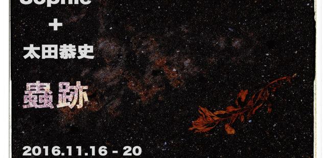 Sophie+太田恭史二人展「蟲跡」11月16日(水)〜11月20日(日)