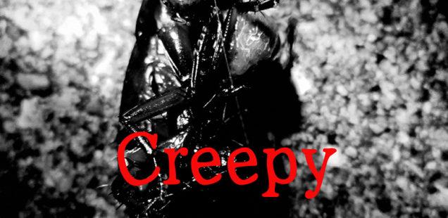 ビーツベスト2015グランプリ写真展 兒嶌秀憲「Creepy」11月2日(水)〜11月6日(日)
