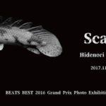 Hidenori kozima個展「Scary」11月1日(水)〜11月5日(日)