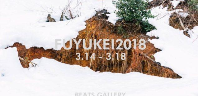 「FUYUKEI 2018」3月14日(水)〜3月18日(日)