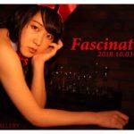 Susumu Tominaga 個展「Fascination」10月03日(水)〜10月07日(日)