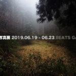 「大阪自然写真展」6月19日(水)〜6月23日(日)
