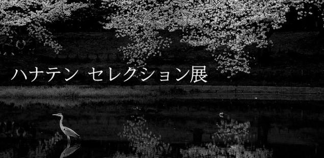 「ハナテン セレクション展」4月16日(水)〜4月20日(日)